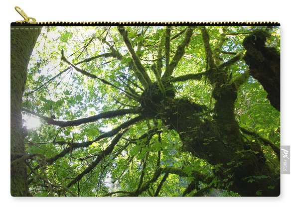 Old Growth Tree In Forest Carry-all Pouch