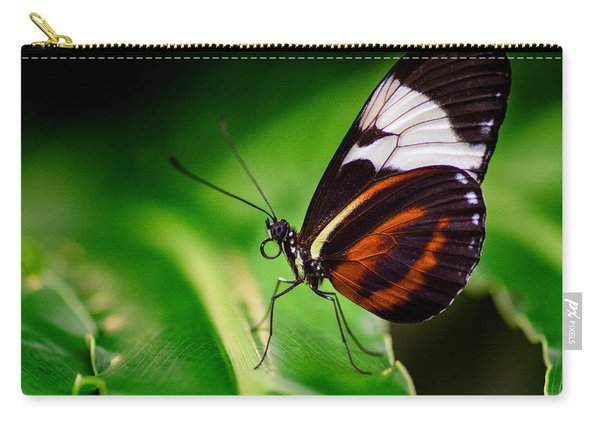 Carry-all Pouch featuring the photograph On The Wings Of Beauty by Garvin Hunter