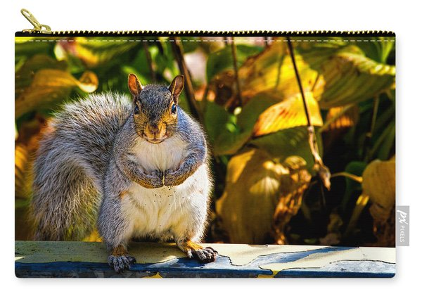 One Gray Squirrel Carry-all Pouch