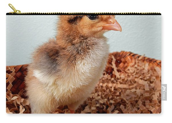Orange Chick Carry-all Pouch