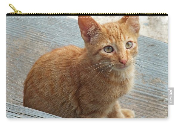 Orange Kitten 2 At The Front Porch Carry-all Pouch