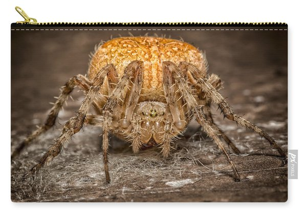 Orange Marbled Orb Weaver Carry-all Pouch