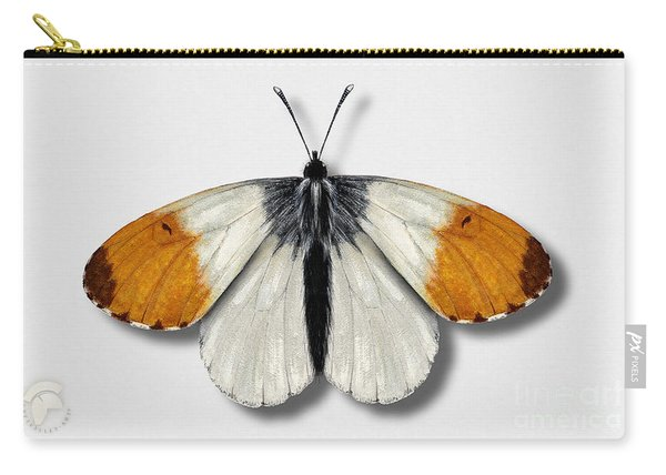 Orange Tip Butterfly - Anthocharis Cardamines Naturalistic Painting - Nettersheim Eifel Carry-all Pouch