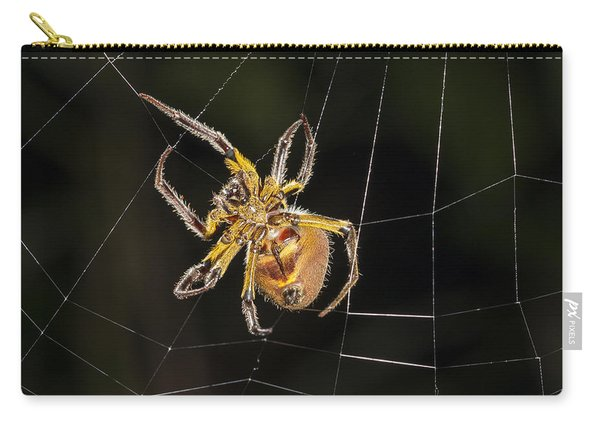 Orb-weaver Spider In Web Panguana Carry-all Pouch