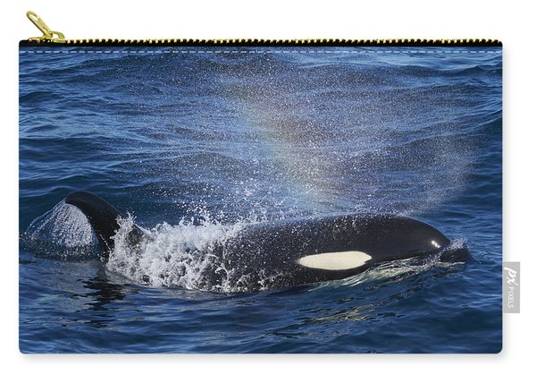 Orca Surfacing Hokkaido Japan Carry-all Pouch