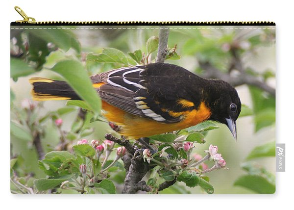 Oriole With Apple Blossoms Carry-all Pouch