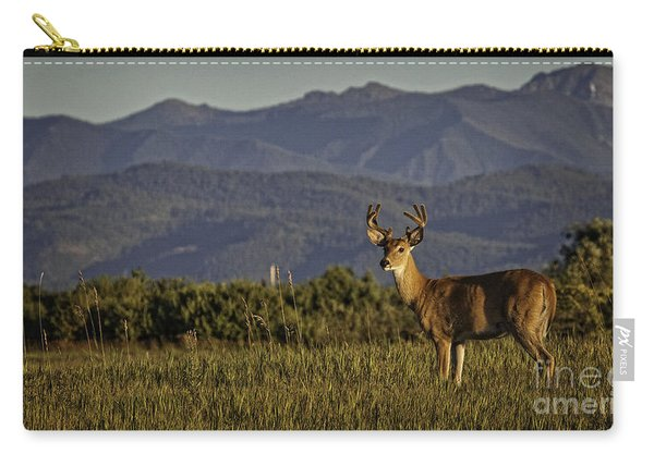 Out West Carry-all Pouch