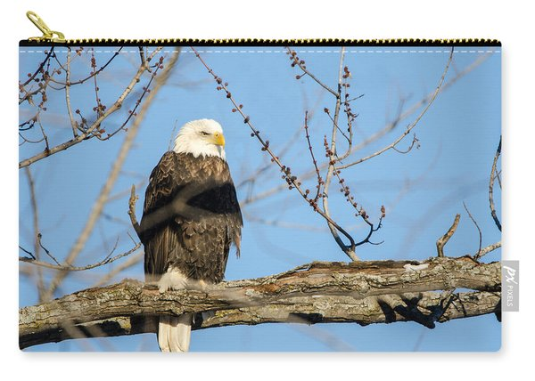 Overlooking Freedom Carry-all Pouch