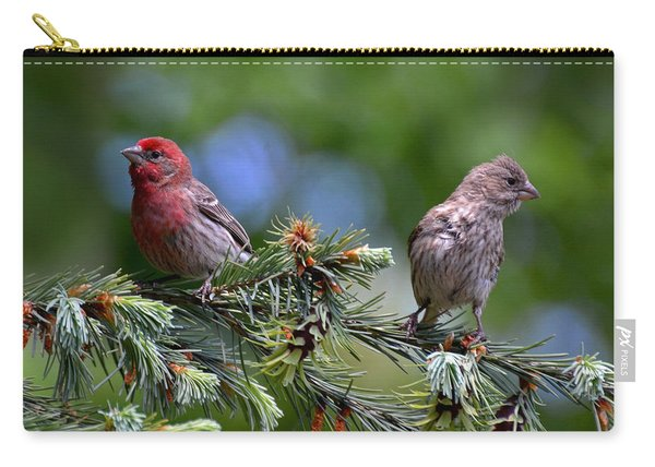 Pair Of Purple Finches Carry-all Pouch