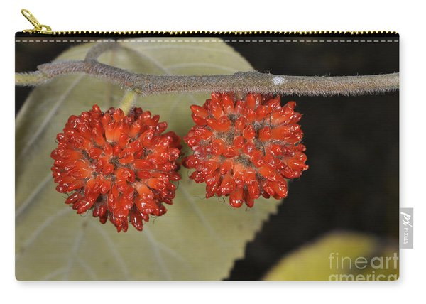 Paper Mulberry Carry-all Pouch