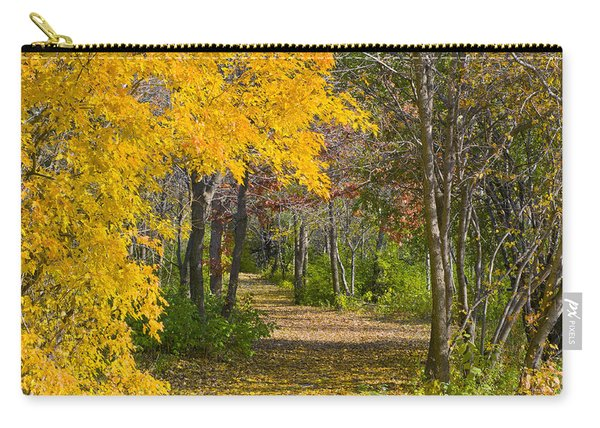 Path Through Autumn Trees Carry-all Pouch