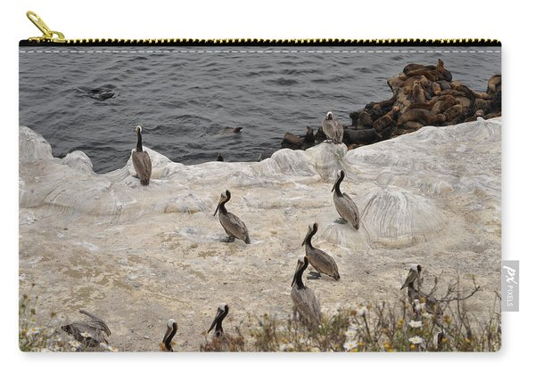 Pelicans Seals N Daisies  Carry-all Pouch