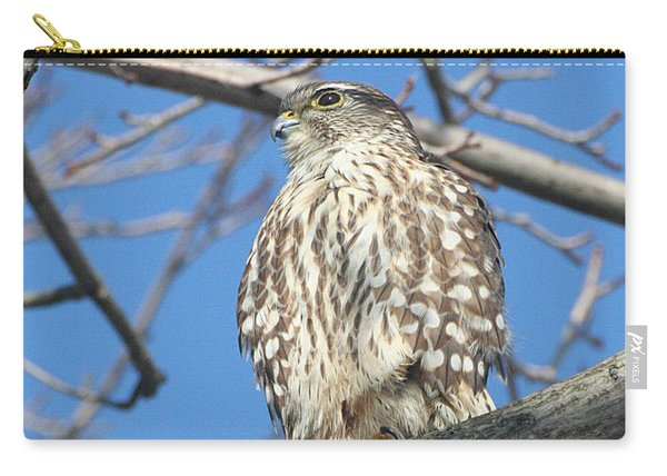Perched Merlin Carry-all Pouch