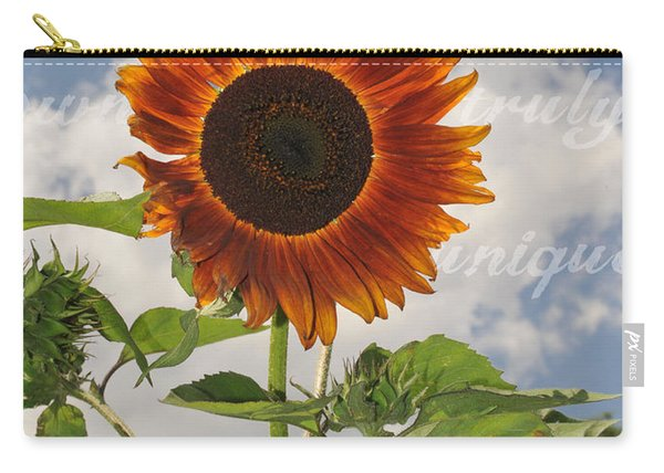 Perfection In The Eye Of The Beholder Carry-all Pouch