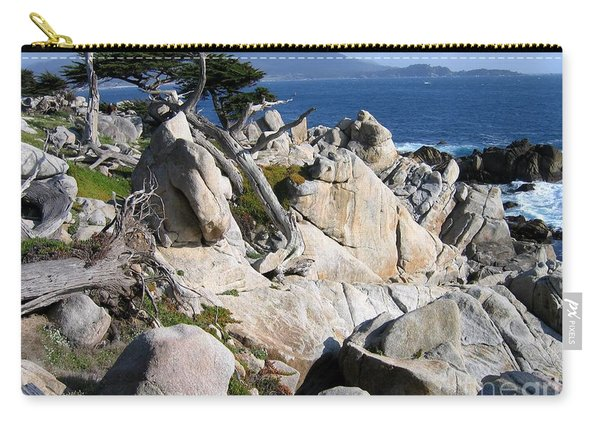 Pescadero Point Carry-all Pouch