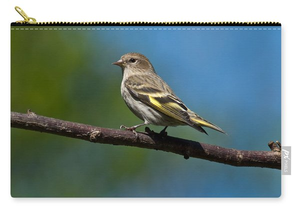 Pine Siskin Perched On A Branch Carry-all Pouch