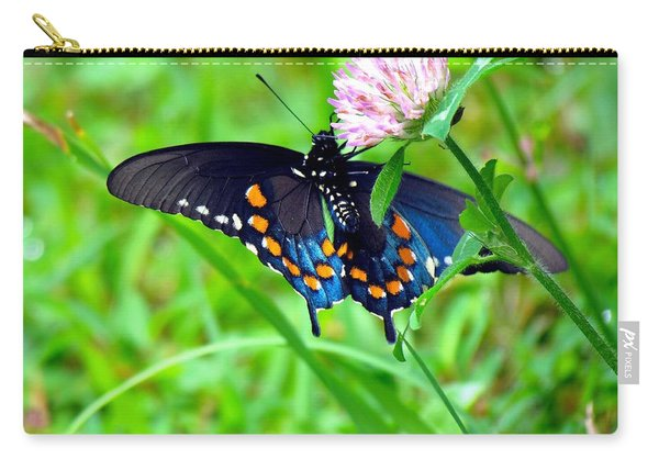 Pipevine Swallowtail Hanging On Carry-all Pouch