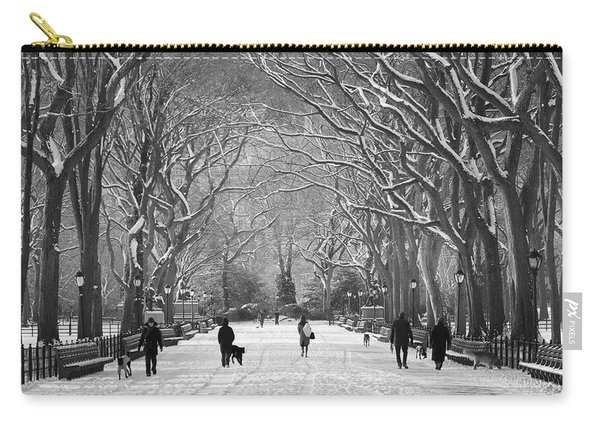 New York City - Poets Walk Winter Carry-all Pouch