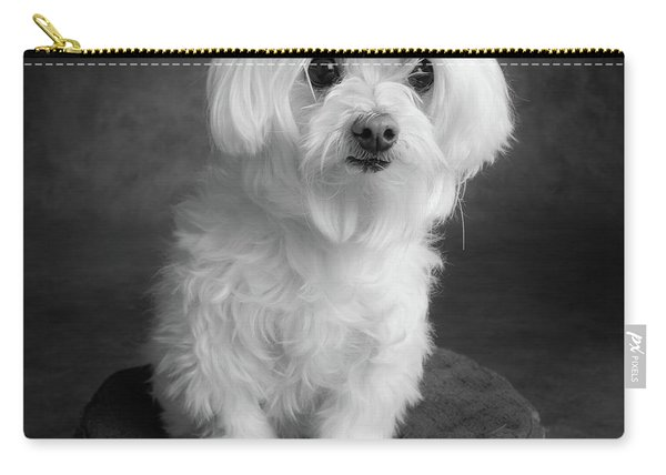 Portrait Of A Maltese Dog Carry-all Pouch