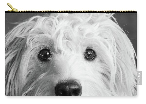Portrait Of A Mini Golden Doodle Dog Carry-all Pouch