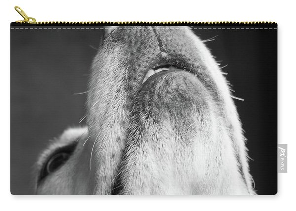 Portrait Of A Yellow Labrador Dog Carry-all Pouch