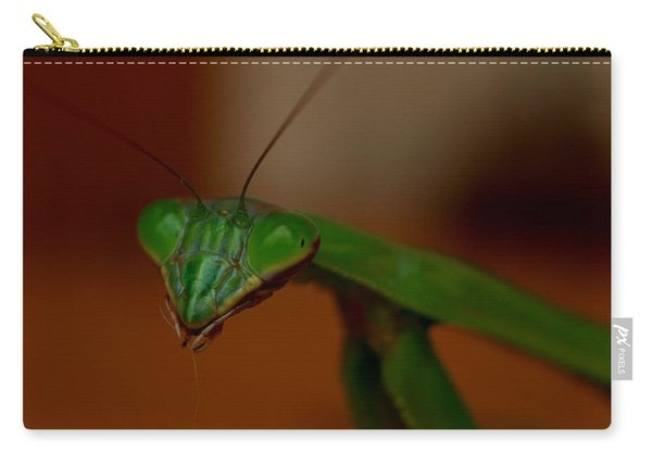 Praying Mantis Closeup Carry-all Pouch