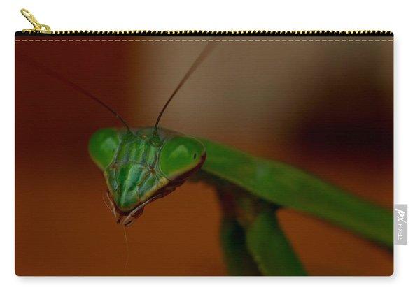 Praying Mantis Closeup Carry-all Pouch