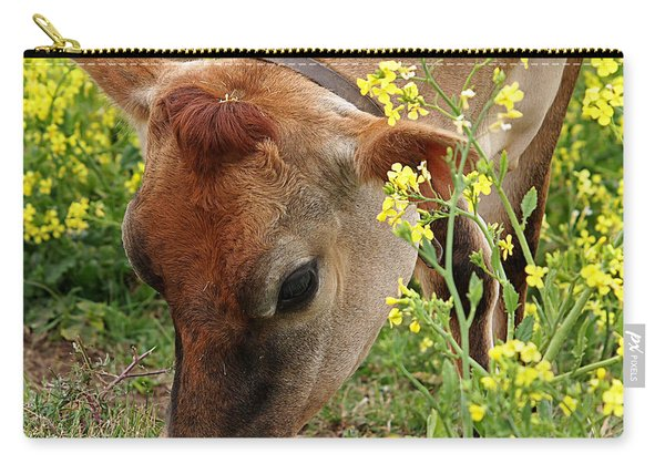 Pretty Jersey Cow Square Carry-all Pouch