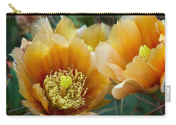 Carry-all Pouch featuring the photograph Prickly Pear Cactus by Mary Lee Dereske