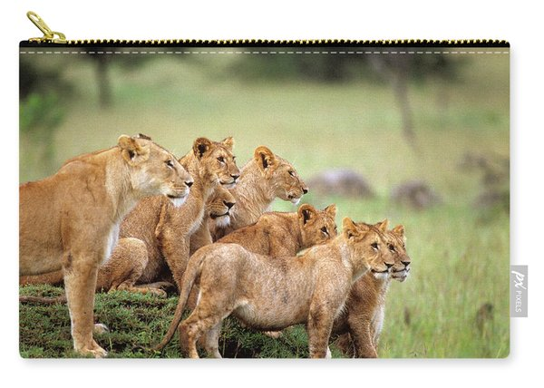 Pride Of Lions On Grassy Mound Masai Carry-all Pouch