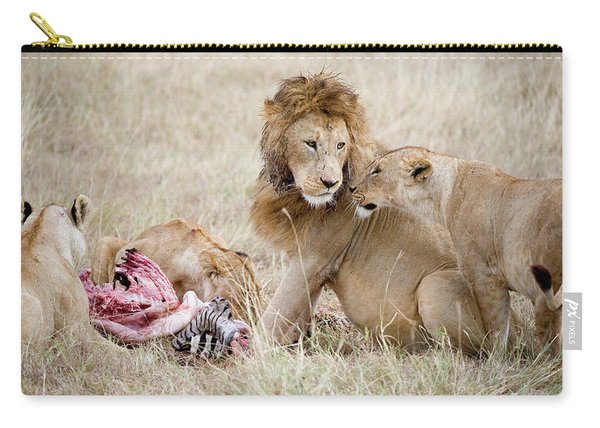 Pride Of Lions Panthera Leo Eating Carry-all Pouch
