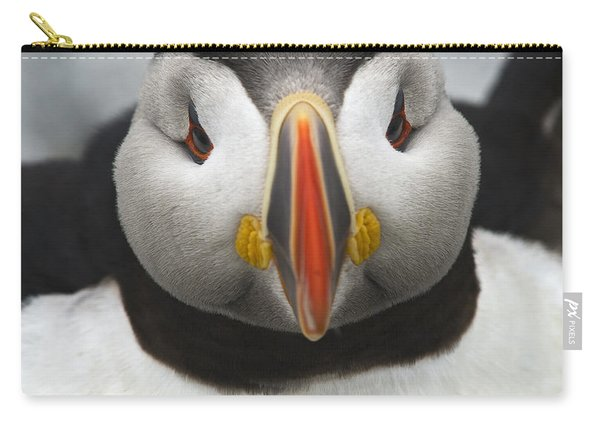 Puffin It Up... Carry-all Pouch
