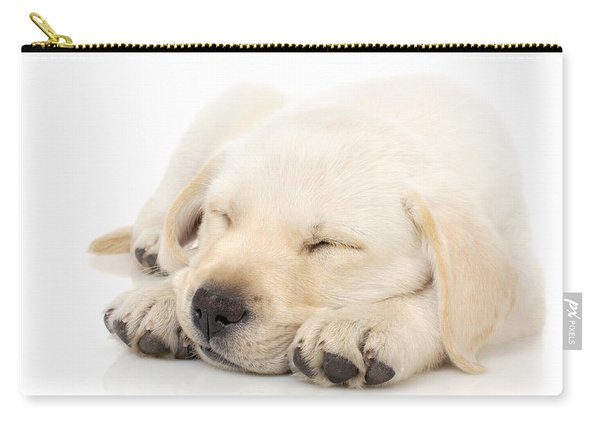 Puppy Sleeping On Paws Carry-all Pouch