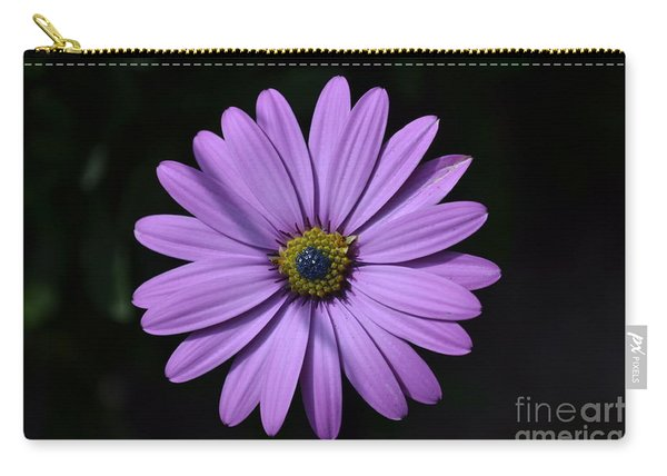 Carry-all Pouch featuring the photograph Purple African Daisy by Scott Lyons