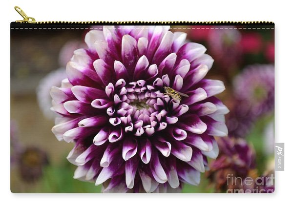Carry-all Pouch featuring the photograph Purple Dahlia White Tips by Scott Lyons