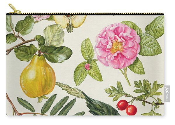 Quince And Other Fruit-bearing Trees Wc Carry-all Pouch