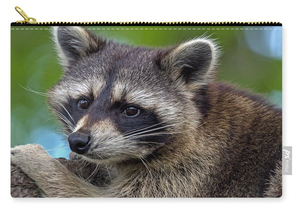 Raccoon Carry-all Pouch