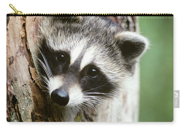 Raccoon Sticking Its Head Out Of A Tree Carry-all Pouch