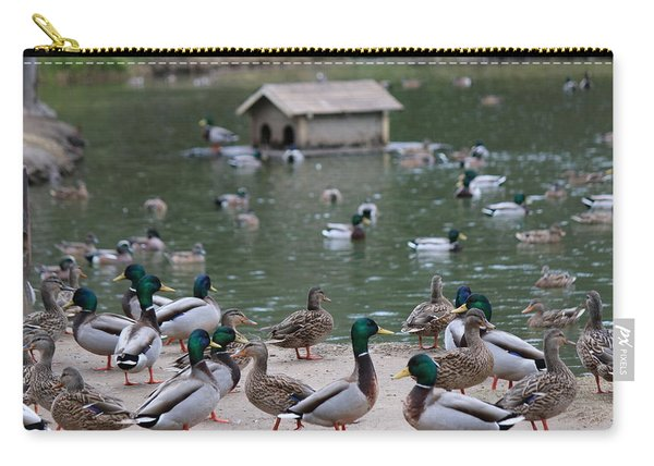 Carry-all Pouch featuring the photograph Rainy Day Duck Party - 2  by Christy Pooschke