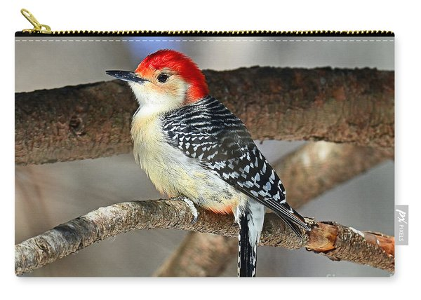 Red-bellied Woodpecker Carry-all Pouch