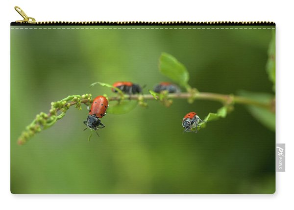 Red Bug Perch In A Plant In Arcos De La Carry-all Pouch