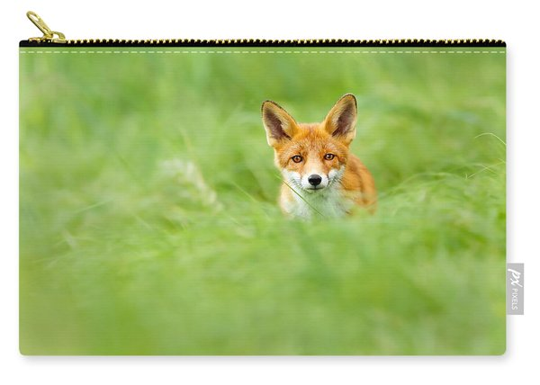 Red Fox In A Sea Of Green Carry-all Pouch