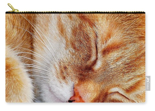 Irish Eyes Are Sleeping Carry-all Pouch