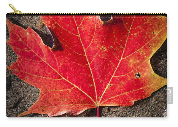 Red Maple Leaf In Water Carry-all Pouch