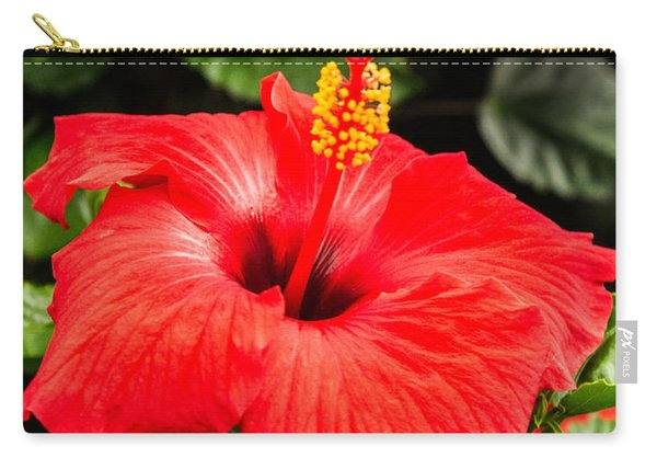 Red Rosy Hibiscus Carry-all Pouch
