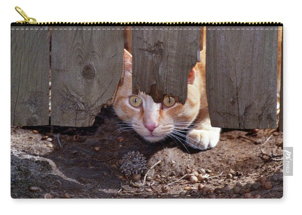 Red Tabby Cat Looking Under Fence Carry-all Pouch