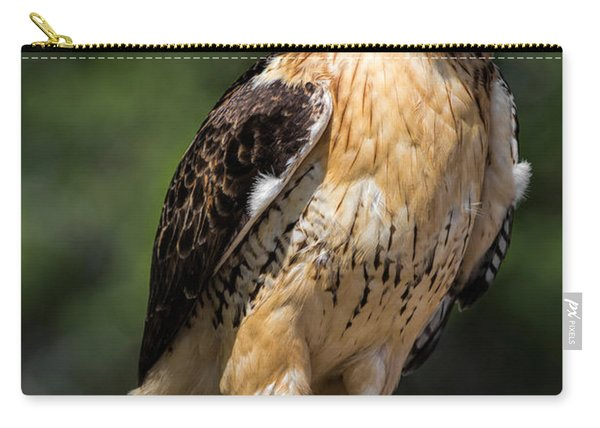 Red Tail Hawk Portrait Carry-all Pouch