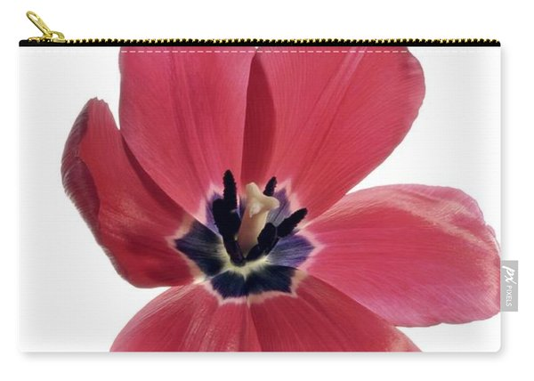 Red Transparent Tulip Carry-all Pouch