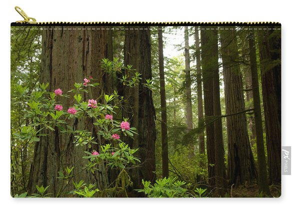 Redwood Trees And Rhododendron Flowers Carry-all Pouch