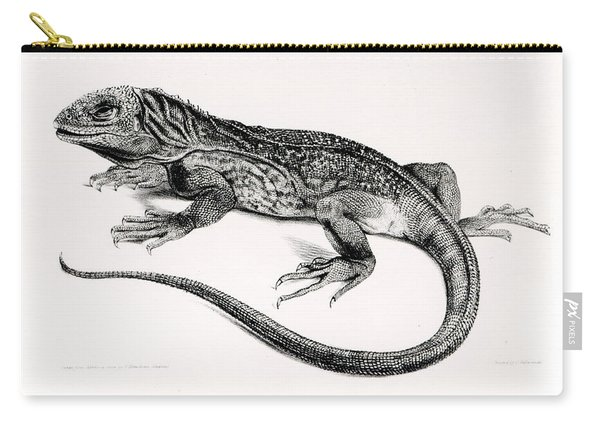 Reptile Carry-all Pouch